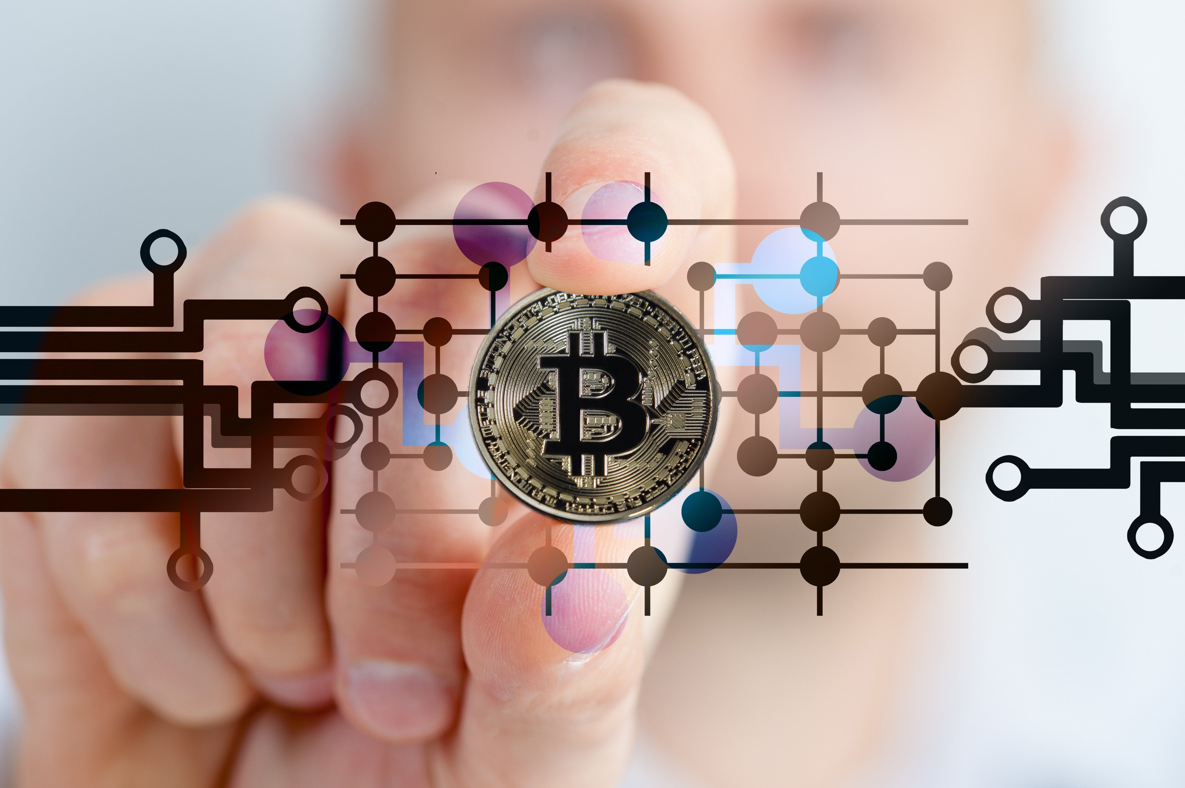 Bitcoin: A Fork in the Road | Munro's Accountants and Advisors